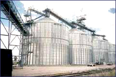Commercial grain bins, like these, have enormous storage capacity