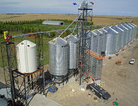 Early harvest combined with a grain dryer saves grain quality at market time.
